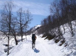 Martin går oppover skiløypene i Kvamskogen