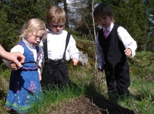 Sara, Andreas og Daniel studerer en maurtue