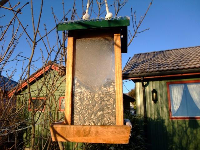 Fuglebrett i frost