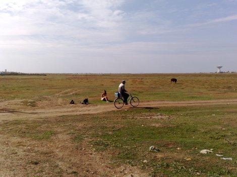 Olia, syklist, okse og romstasjon - Molotsjnoje, Krim