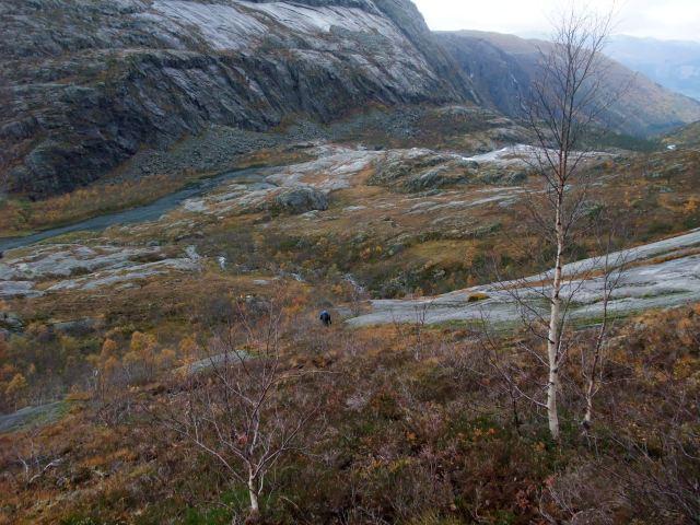 Kinso, Hardanger, Hardangerlandskap