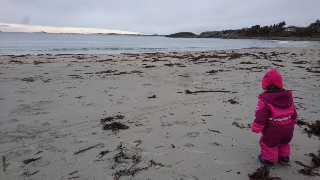 Ølberg, Strand, November, Høst, Sjø